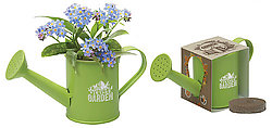 Mini Blossom Kit Watering Can